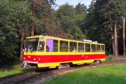 Бесплатный проезд на общественном транспорте