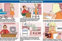 Процедура получения пособий по материнству